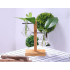 Glass Vase Tabletop Hydroponics Plant Bonsai Flower Pot with Wooden Tray Home Table Decoration  1 Vase