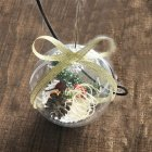 High Transparent Hollow Ball Hanging Pendant for Christmas Decor 8cm