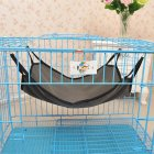 Kitten Cat Hammock Dark Gray