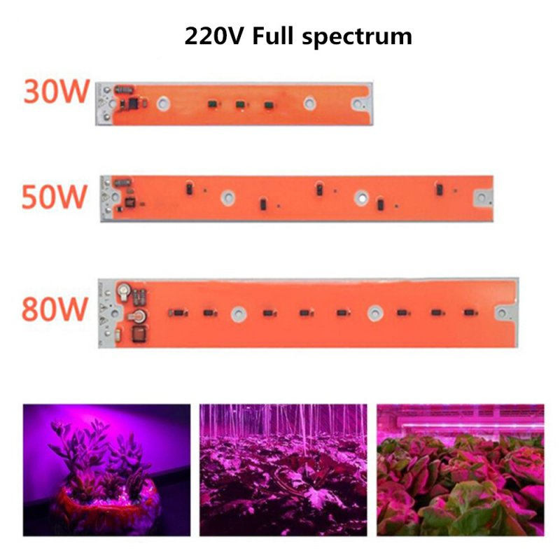 LED Full Spectrum Grow Light Source for Iodine Tungsten Lamp AC220V