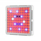 LED Grow Light  100 LED Lights   R B UV IR CW  86 2 2 2 10PCS  UV  385 395nm    IR   365 375nm