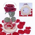 LED Romantic Simulate Rose Light with Glass Shield Wood Base for Decor