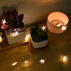 LED Waterproof Star Shaped Copper