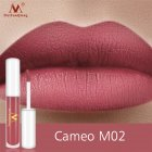 Lip Makeup Non-stick Cup Lipstick Lip Gloss Lasting Moisturizing Waterproof Lip Gloss Matte Lip Glaze M02