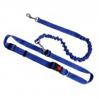 Multifunction Elastic Force Pet Leash for Outdoor Dogs Training Walking