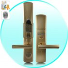 Need a strong and secure Fingerprint Door Lock  Biometric Door Lock  or Fingerprint Security Lock   Then visit the factory direct source   Chinavasion com