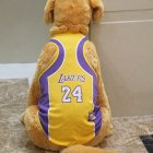 Pet Dog Basketball Game Vest for Puppy Golden Retriever Samo Clothing  purple_XL