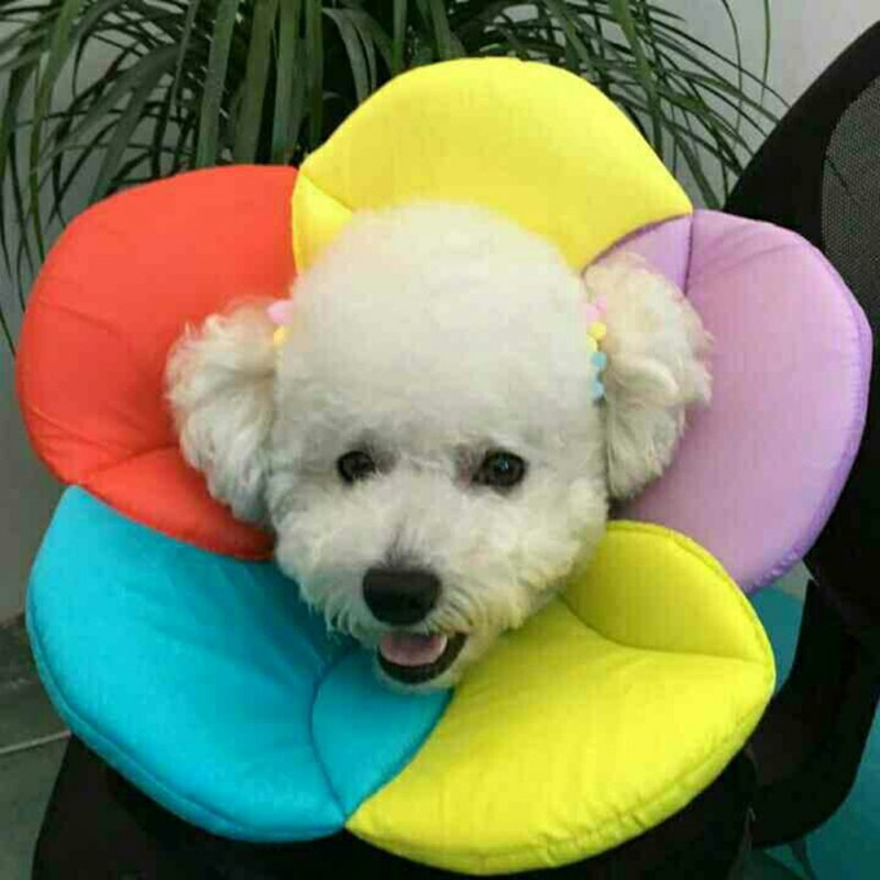 Pet Dog Cat Soft Comfortable Durable Collar Wound Healing Cone Protection Rainbow color_L