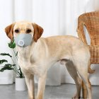 Pet Dog Soft Face Cotton Mouth Cover Respiratory Filter Anti-fog Haze Muzzle Face Guard Gray 3pcs/set_M