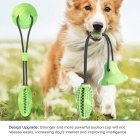 Pet Molar Bite Toy with Suction Cup Puppy Elasticity Suction Rubber Chew Ball for Dog Cleaning Teeth