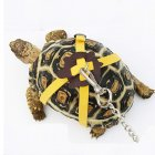 Pet Turtle Traction Belt Control Rope