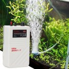Portable Aquarium Dry Battery Operated Aerator Air Pump for Outdoor Fishing