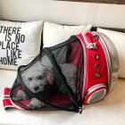 Portable Pet Cat Backpack Foldable Multi-Function Bag Large Space Capsule Cage red