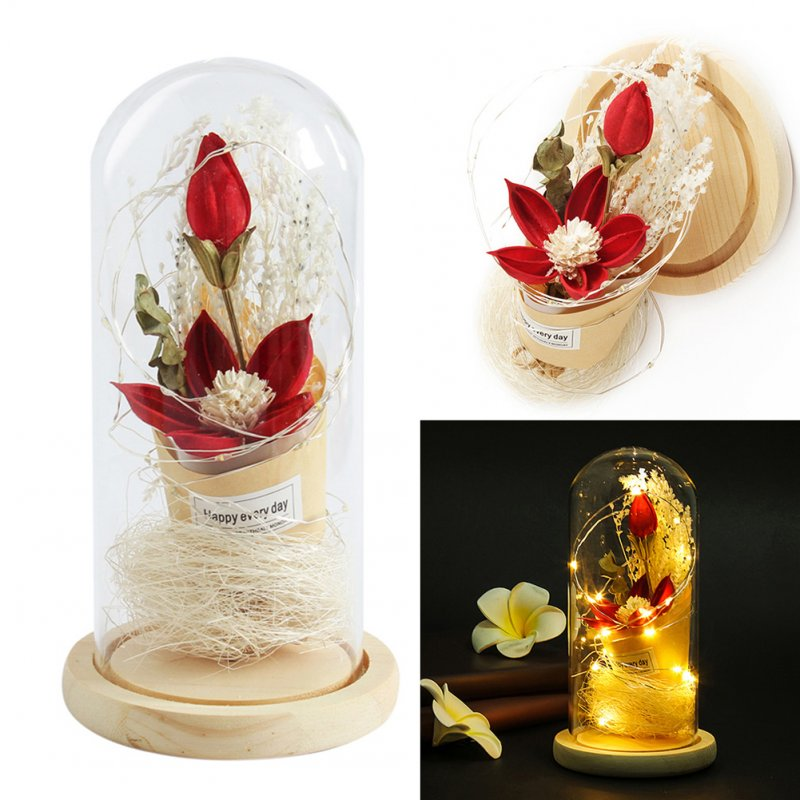 Preserved Flower Leucadendron Shape Battery Powered String Light with Glass Shade for Valentine As shown
