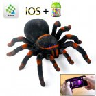 RC Tarantula has 2 4GHz Frequency and Supports both Android and iOS