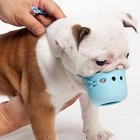 Round Cute Dog Mouth Cover Adjustable Anti-Biting Barking Muzzles for Flat Mouth Puppy Kitten blue_S