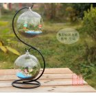 S Globe Shape Clear Hanging Glass Vase Ornament Micro Landscape Wedding Home Decor