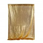 Shimmer Sequin Curtain Decoration