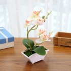 Simulate Butterfly Orchid Flowerpot Potted
