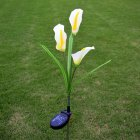 Solar Energy Powered 3 Plastic Artificial Calla Lily 3 LEDs IP55 Outdoor Decorative Light Courtyard Lamp