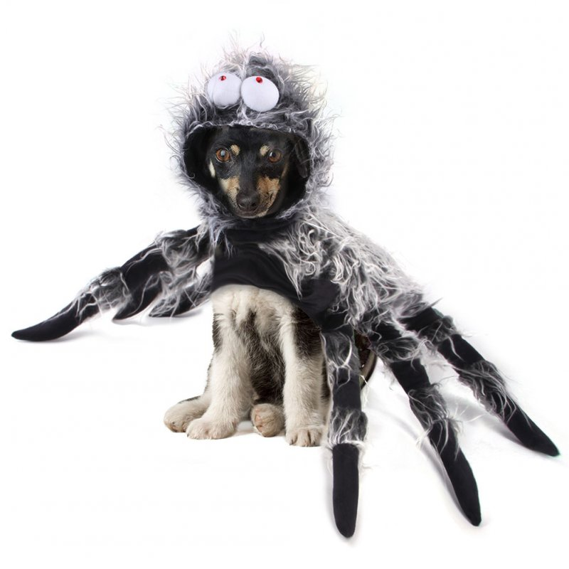 Spider Shape Costume Cosplay Cat Dog Chest Strap Clothes for Halloween Party XL