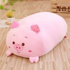 Squishy Chubby Plush Toy Pillow Cushion