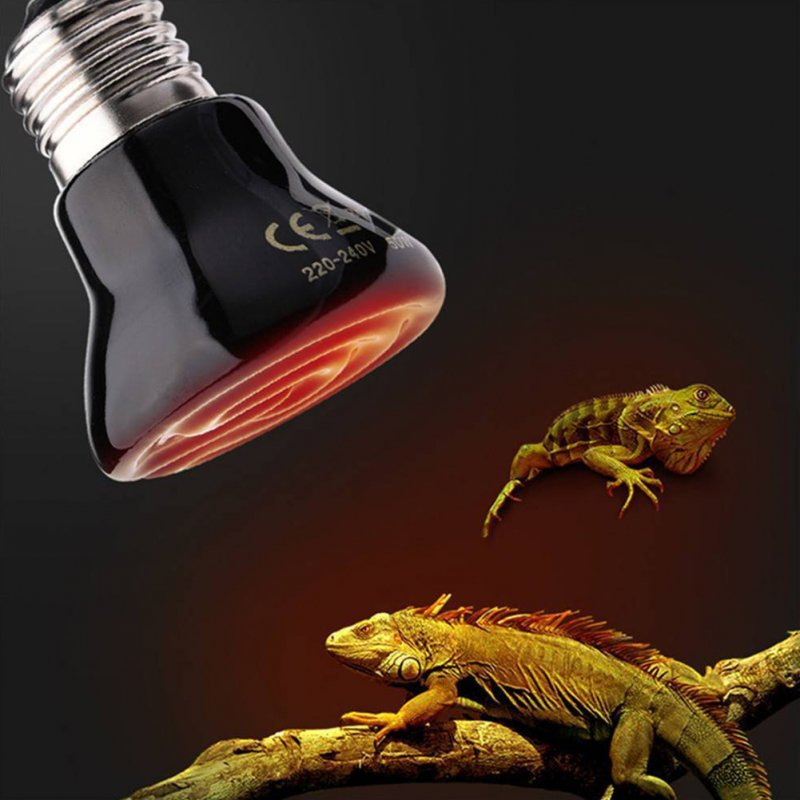 Stylish Durable Mini Ceramic Heater for Reptiles and Amphibians 100W