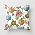 Thanksgiving Day Pumpkin Printed Throw Pillow Cover Pillowcases Decorative Sofa Cushion Cover DRD85-5_45*45cm
