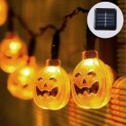 These LED Halloween Decoration Lights are great for decorating your home or yard during the upcoming autumn months