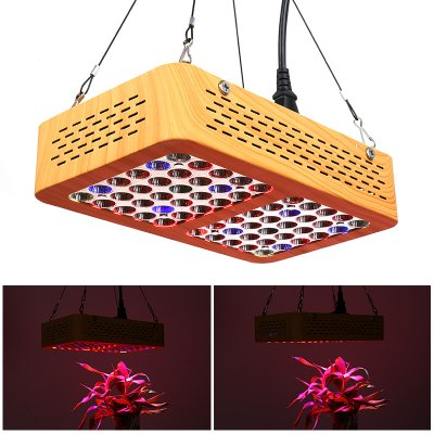 300W LED Grow Light
