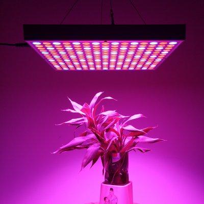 45watt Led Grow Light 225led Lights Blue And Red 2160 Lumen Stimulates Growth Yield Flowering Energy Efficient