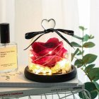 Valentines Exclusive In Glass Dome with Lights Eternal Real Rose Christmas Day Gift Rose red