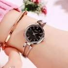 Women Stainless Steel Waterproof Bracelet Watch with Spiral Case for Casual Office  Silver shell black dial