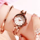 Women Stainless Steel Waterproof Bracelet Watch with Spiral Case for Casual Office  Rose gold shell white dial