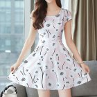 Women Summer Fashion Floral Slim A-line Mid-length Dress Photo Color_XL