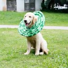 Wound Healing Collar Dogs Cats Medical Protection Neck Ring green XS