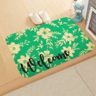 ground mat flannel surface + non-slip plastic bottom welcome hallway kitchen absorbent floor mat 40*60cm 9
