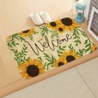 ground mat flannel surface + non-slip plastic bottom welcome hallway kitchen absorbent floor mat 40*60cm 10