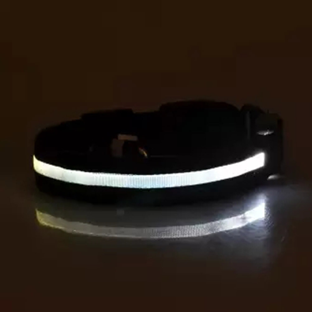 LED Pet Cat Dog Collar Night Safety Luminous Necklaces for Outdoor Walking White_L