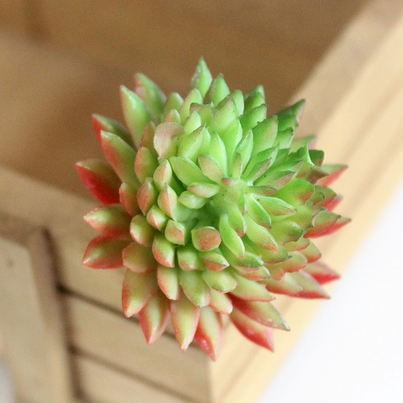 Artificial Lifelike Succulents Multi Type PVC Plant Garden Miniature Aloe Cactus DIY Home Floral Decor