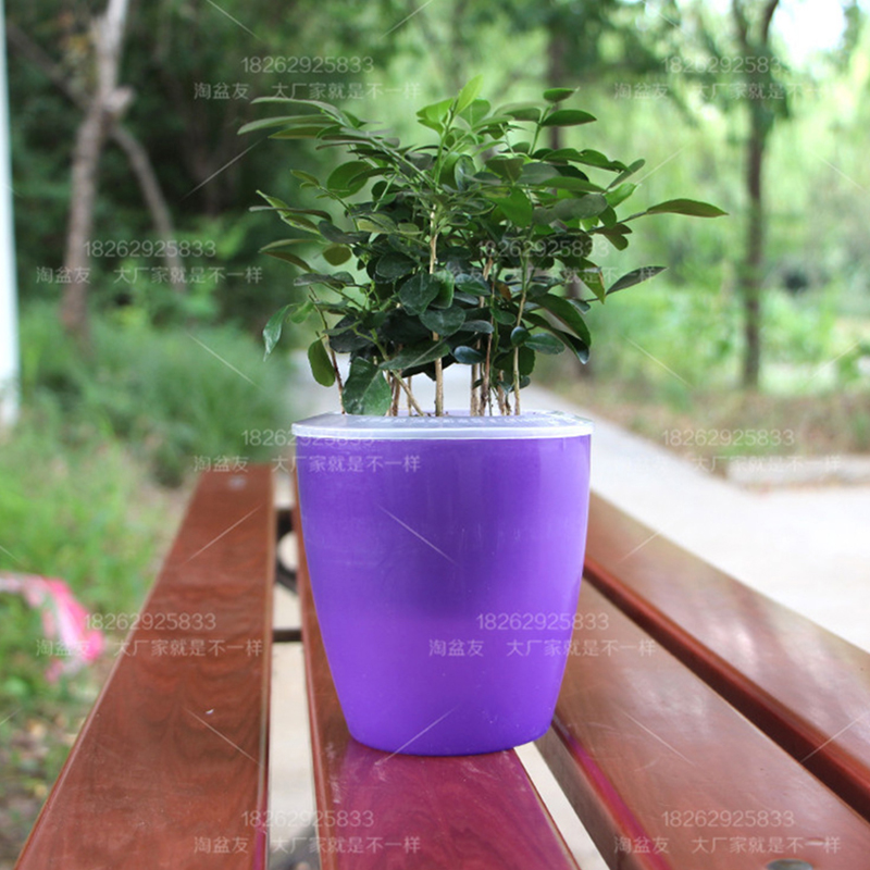 Colorful Self Watering Round Planter Flower Pot Home Garden Decor Professional Green Plant Vase Translucent purple_Big (M7)