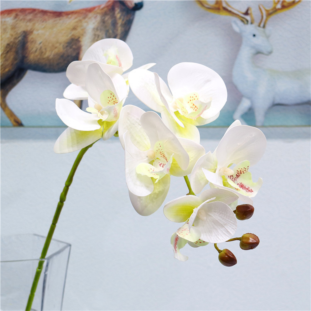 6Heads 3D Print Artificial Phalaenopsis Flower for Home Wedding Tabletop Decor Milk white